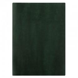 Lecassa A5 2020 V/U, Green